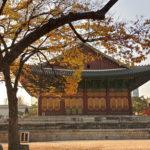 ソウル一人旅、徳寿宮(トクスグン)を巡りながら。