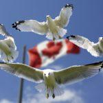 カナダ・ノバスコシア州にあるケープ・ブリトン(Cape Breton)への留学もいいかも。